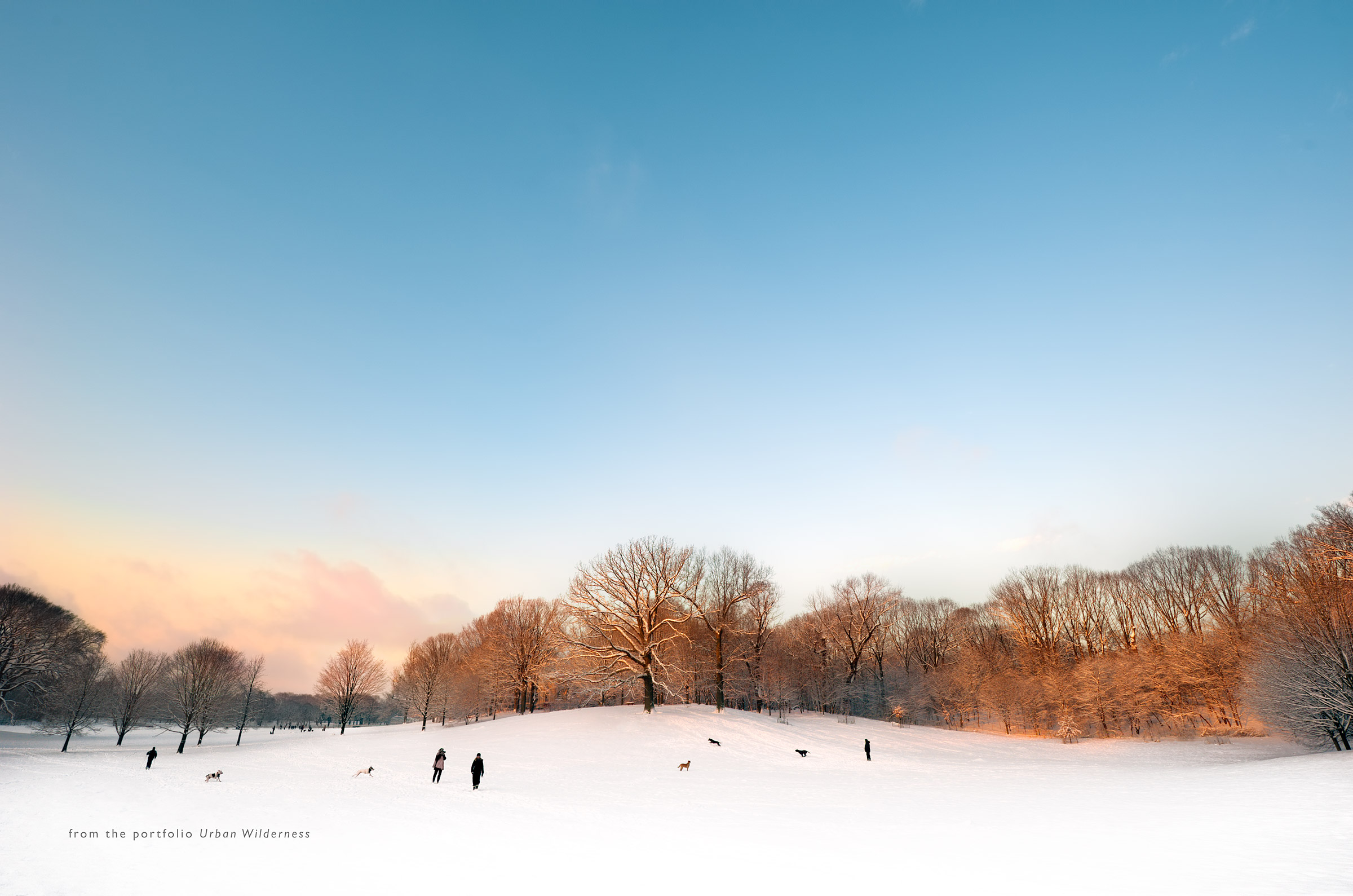 The-Sledding-Hill-Sunrise-4-Portfolio-Splash